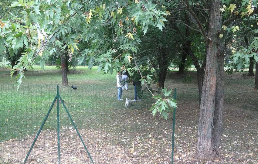 Apertura Area di Sgambamento Cani – Parco Leopardi (PV)